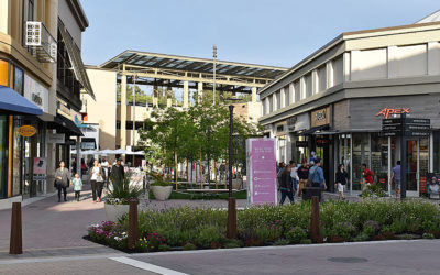 Broadway Plaza Shopping in Walnut Creek